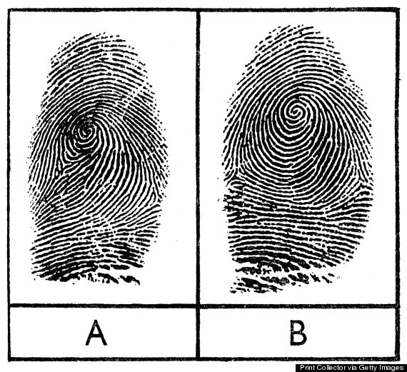 Fingerprints of identical twins, 1956.