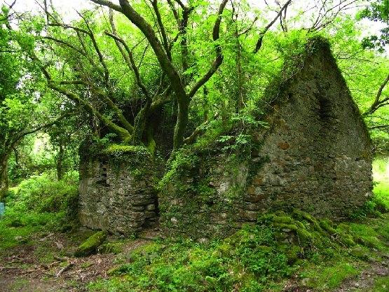Opuszczony dom na szlaku turystucznym w Irlandii