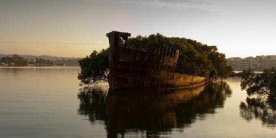Wrak staktu SS Ayrfield w Australii