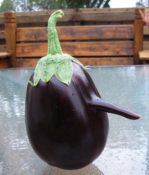 Bakłażanowy pinokio
