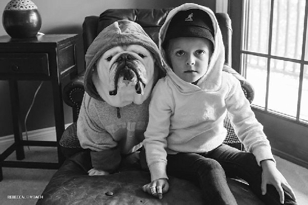 Przyjaźń pomiędzy buldogiem i dzieckiem