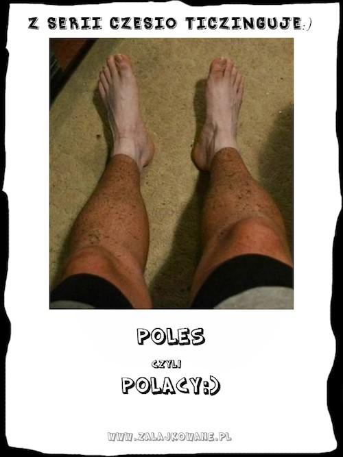 poles_mini
