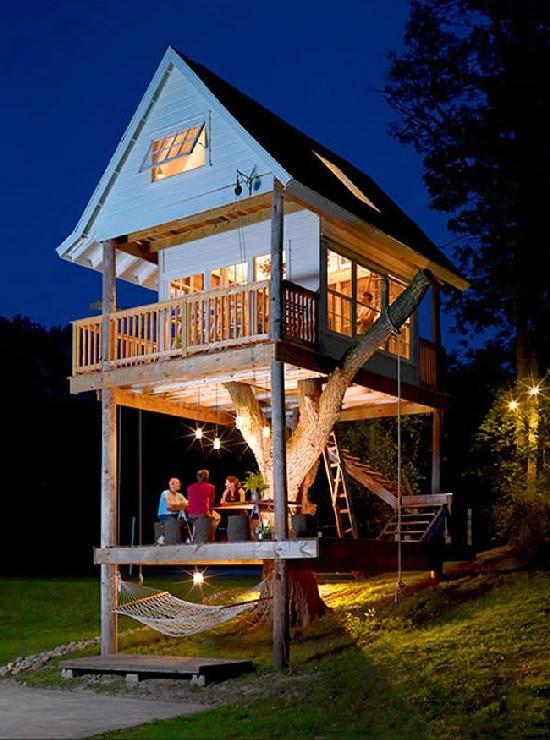 Wymarzony dom - ogromny domek na drzewie
