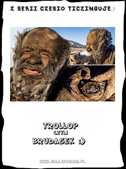 Brudasek- Trollop