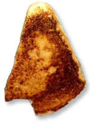 Świeta kanapka