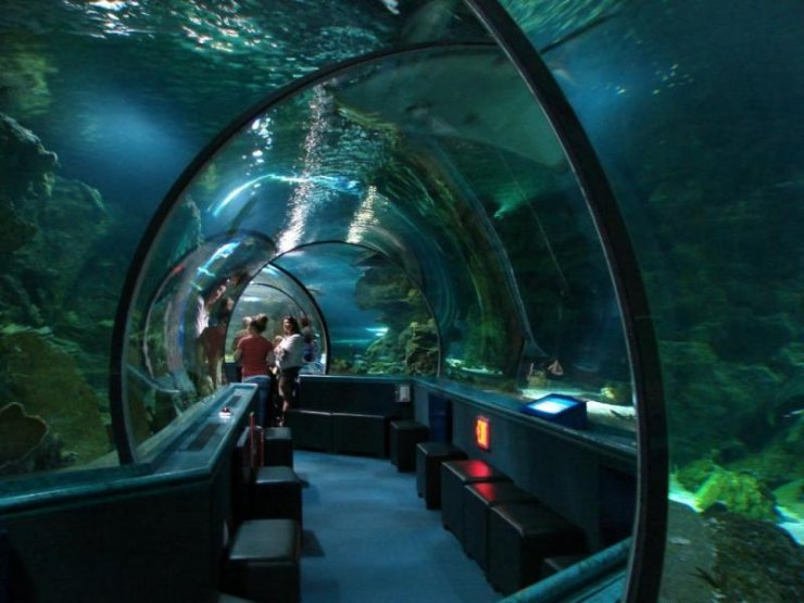 Oceanarium na wyspie Guam