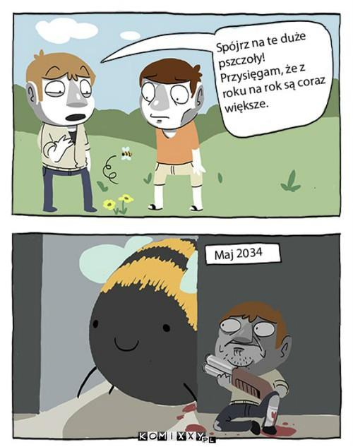suchar czesia