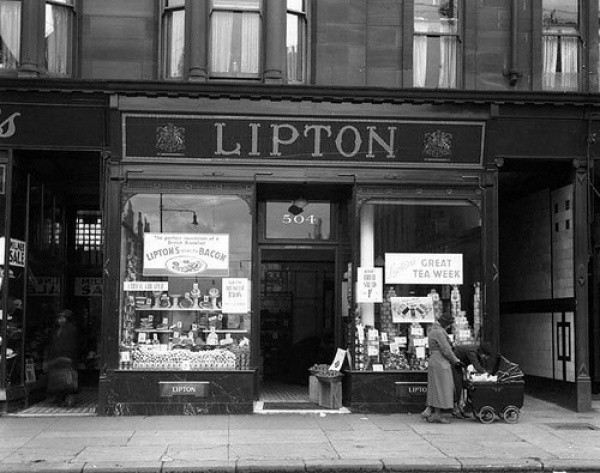 Początki Lipton