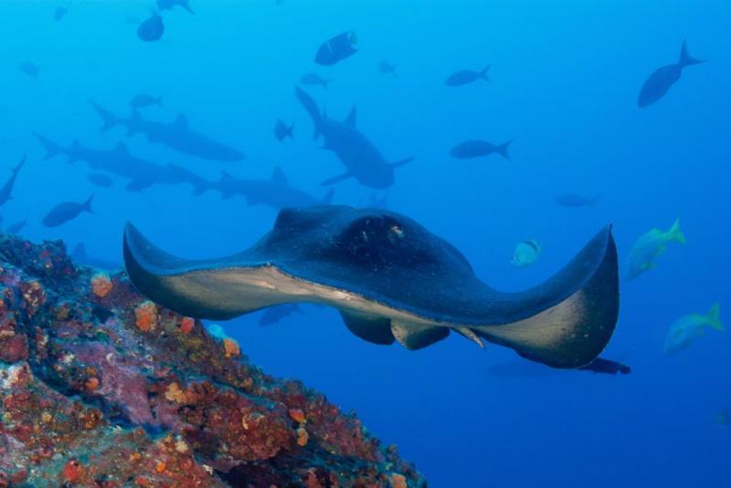 10 państw świata najrzadziej odwiedzanych przez turystów - wyspy Marshalla