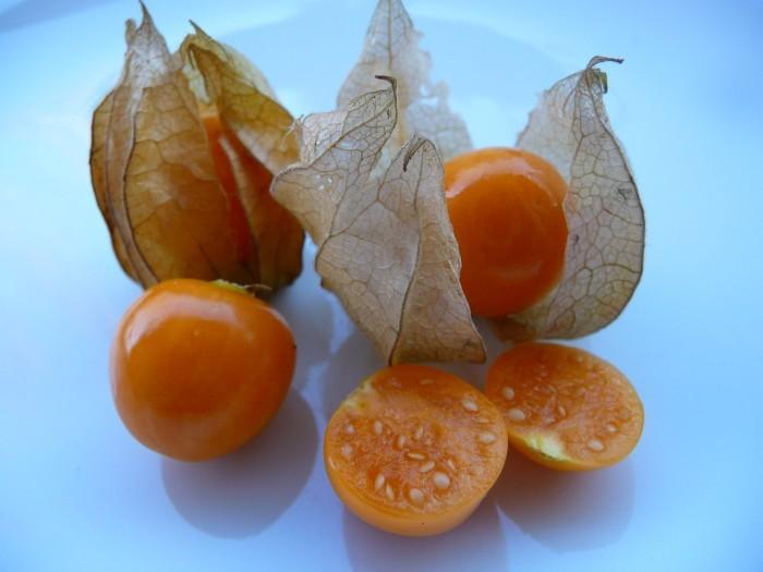 Dziwne owoce - miechunka pomidorowa
