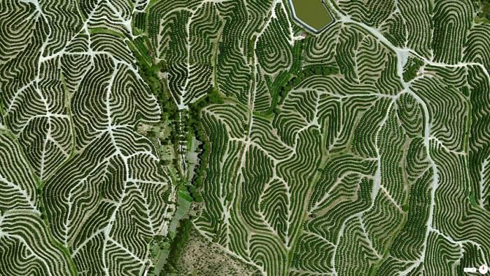 Niesamowite Zdjęcia Satelitarne Projekt Daily Overview