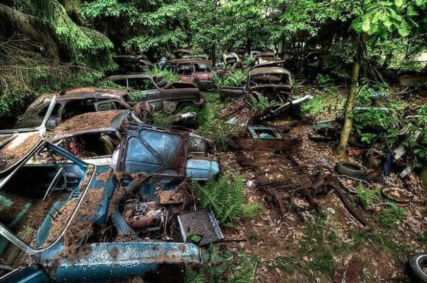 cmentarzysko dla samochodów w Belgii