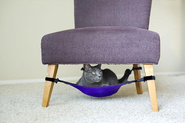 hamak dla kota