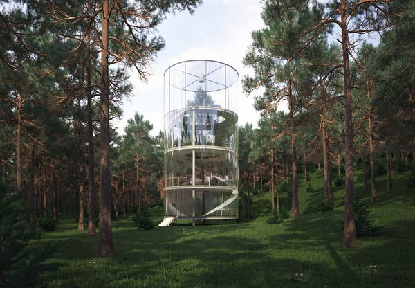 oszklony dom w lesie