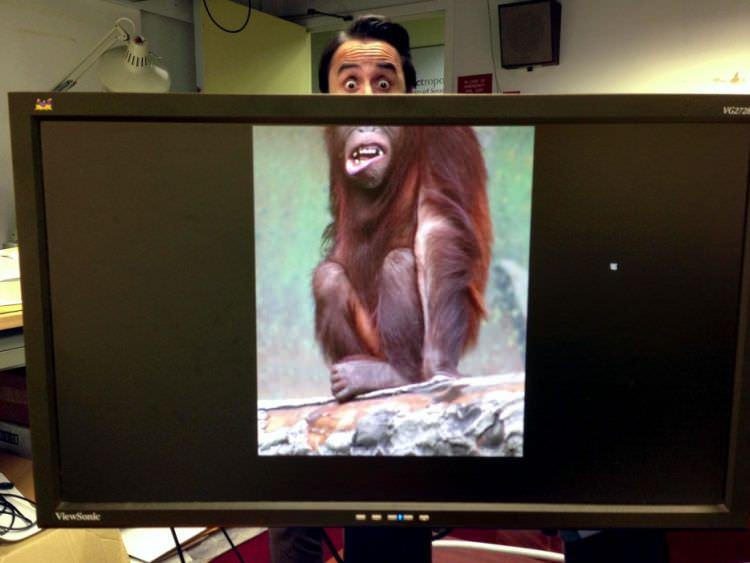 gdy nuda w biurze