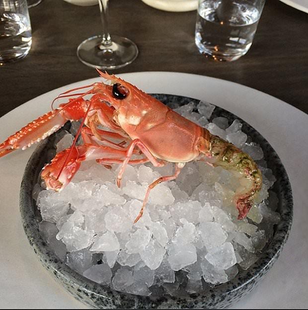 noma-najlepsza-restauracja-swiata-2