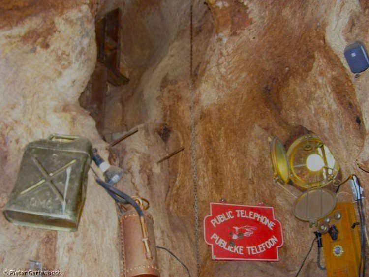sunland-baobab-bar-w-drzewie-7