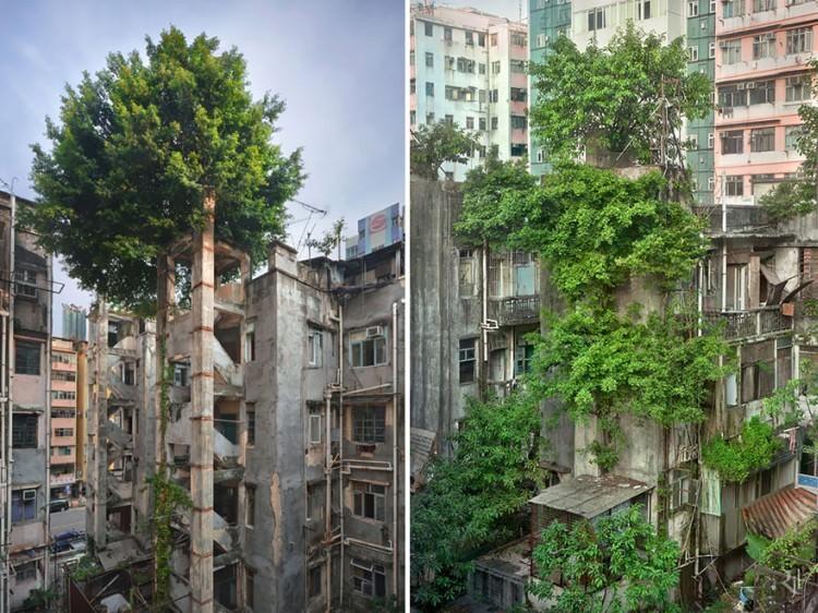 natura-vs-cywilizacja-2