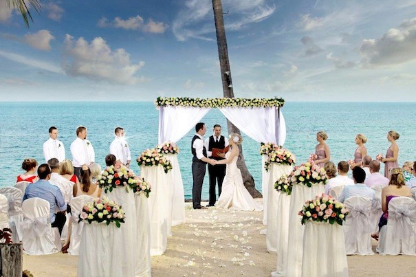 wesele na plazy zalajkowane