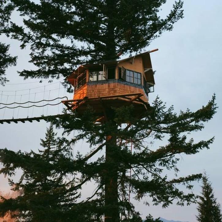 wypasiony-domek-na-drzewie-4