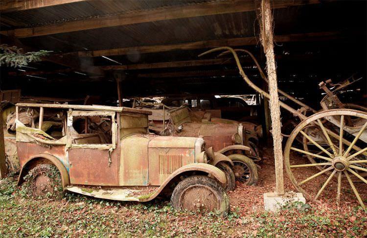 samochody-znalezione-na-farmie-14