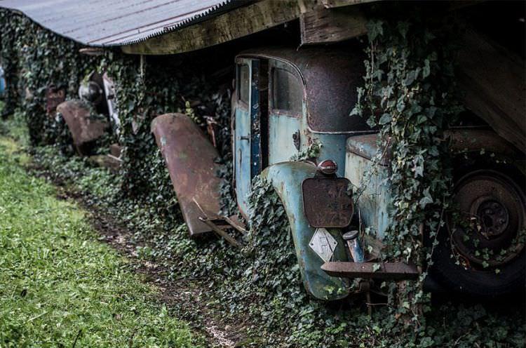 samochody-znalezione-na-farmie-15