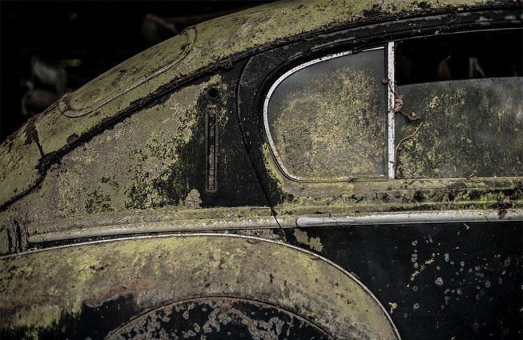 samochody-znalezione-na-farmie-5