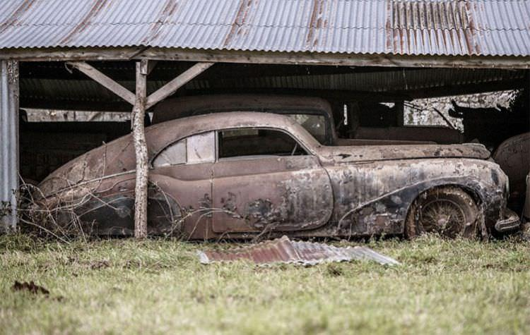samochody-znalezione-na-farmie-6