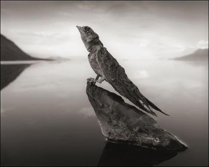 jezioro-natron-10