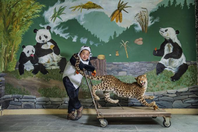 Opiekun pand w Chinach
