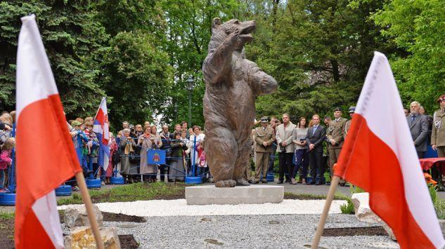 Pomnik niedźwiedźa Wojtka w Krakowie. Foto.