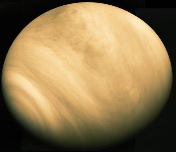 Wenus planeta