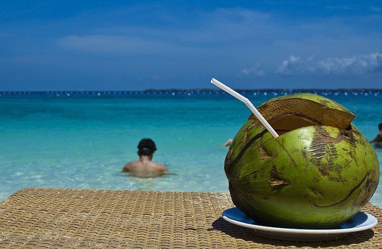 ciekawostki o kokosach