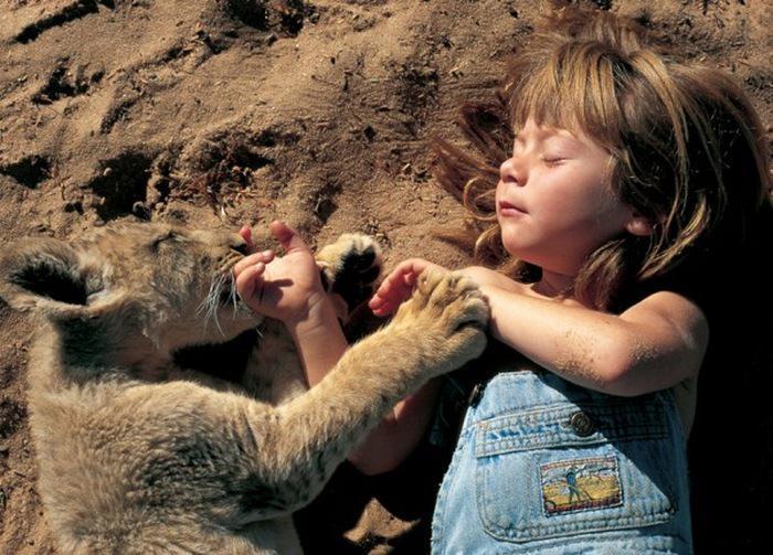 Tippi Degre - dziewczynka z buszu i lew Mufasa