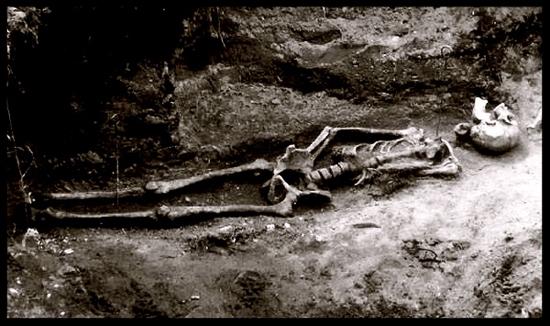Cmentarz wampirów celakovice