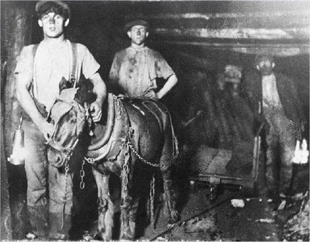 Górnicze kucyki