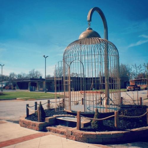 Ogromna klatka dla ptaków