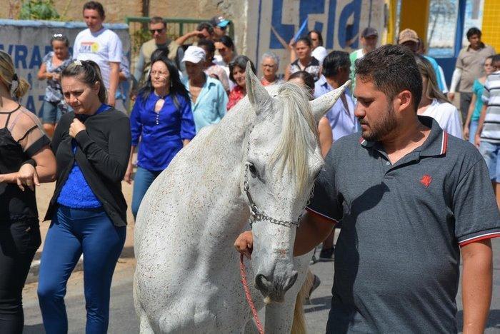 horse-goodbye-owner-funeral-brasil-3