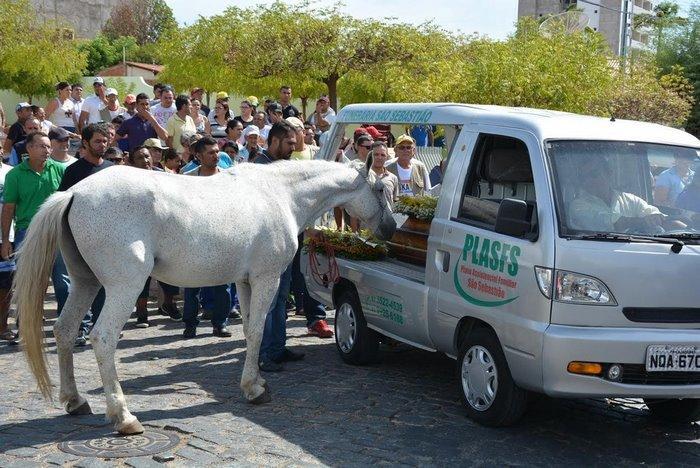 horse-goodbye-owner-funeral-brasil-4