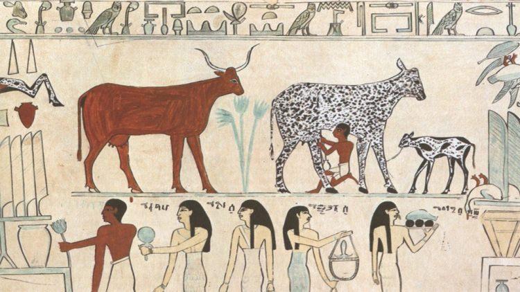 mleko w Starożytności