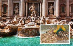 fontanna di Trevi monety