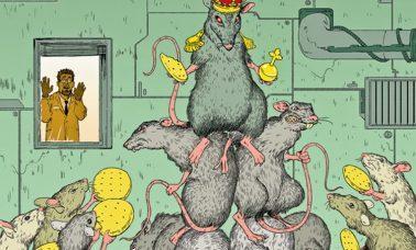 hierarchia myszy
