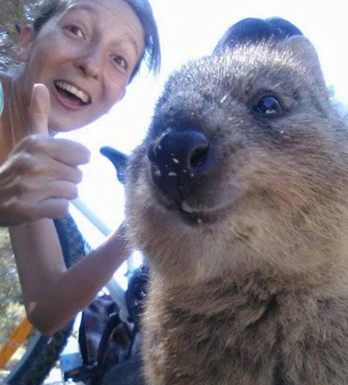 Selfie z Kuoką
