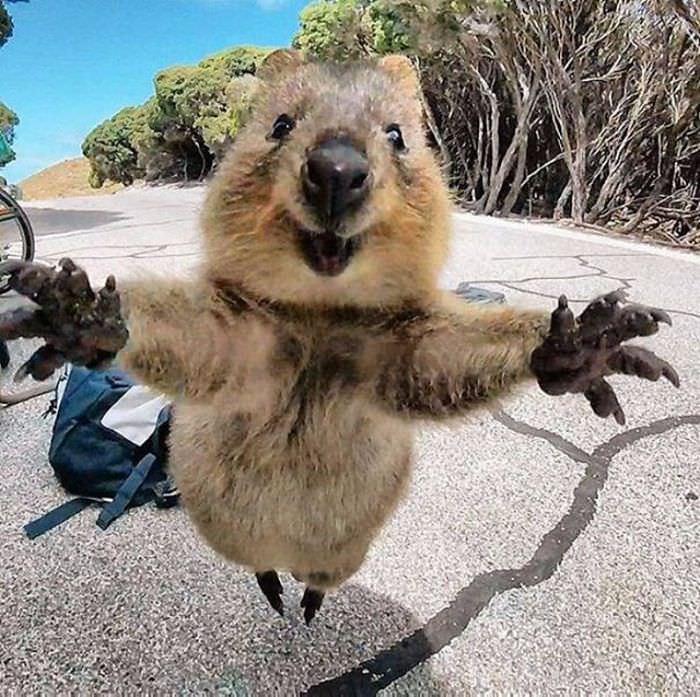 Kuoka selfie