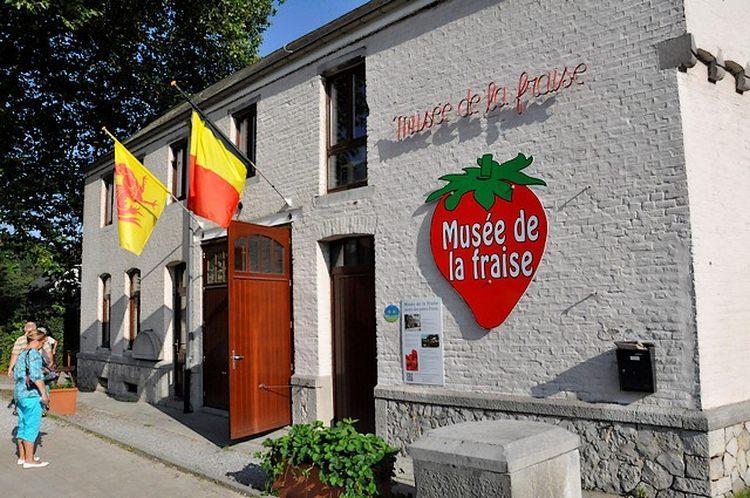 Muzeum truskawek w Belgii