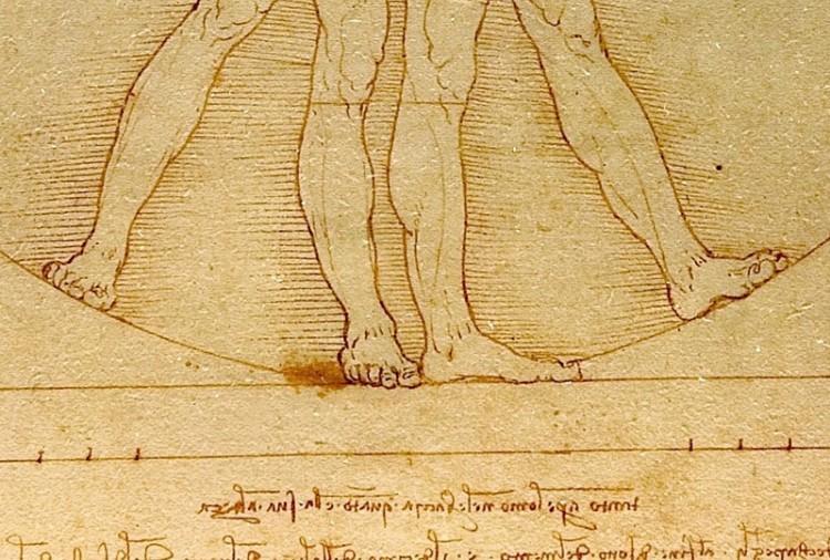 Człowiek witruwiański Leonarda da Vinci.