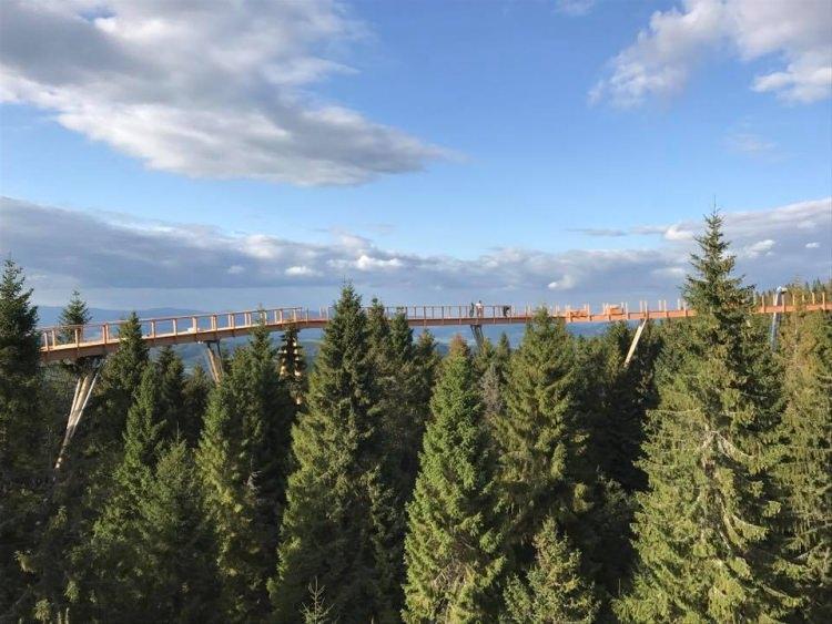 Chodnik korunami stromov na Słowacji