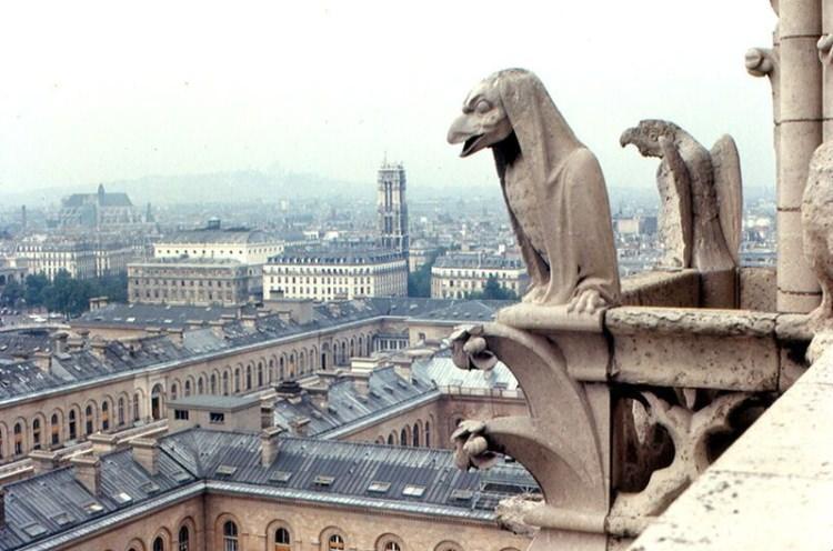 Gargulce pilnujące katedry Notre-Dame