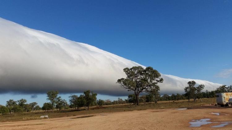 chwała poranna chmura