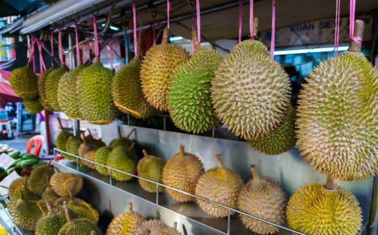 dlaczego Durian śmierdzi?